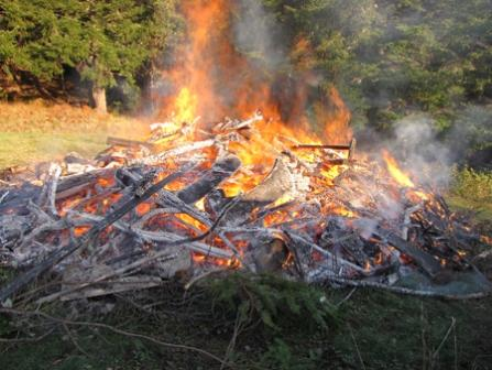 picture of a burn pile